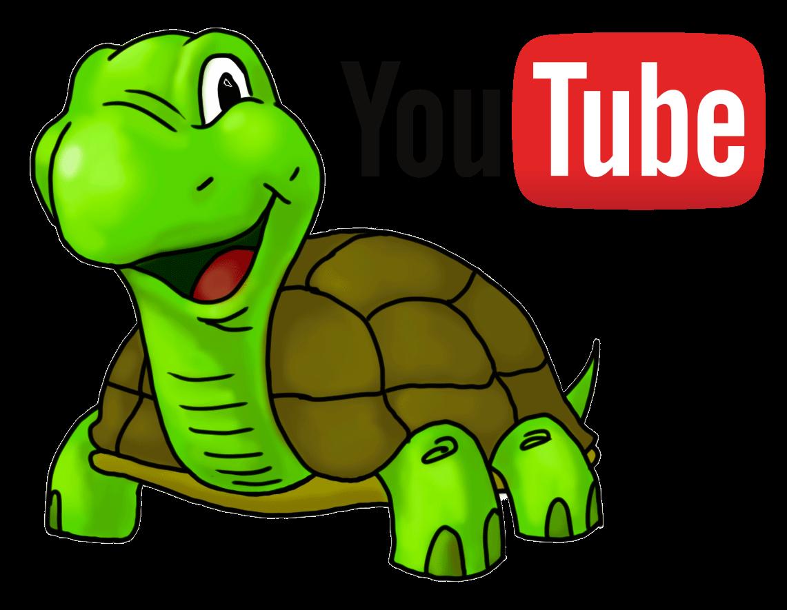Turtle YouTube