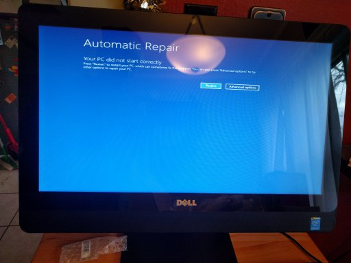 Dell Inspiron 20 3048-02-Windows Fail