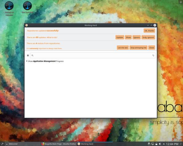 Sabayon-22-Updates Screen