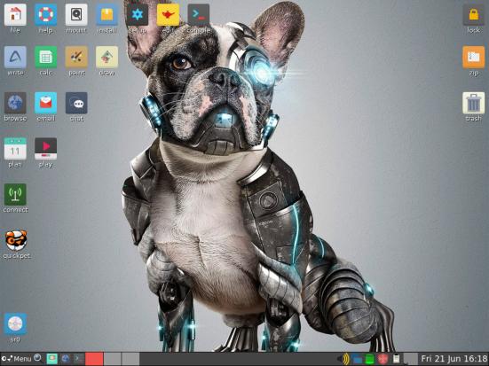 PuppyLinux VM 5