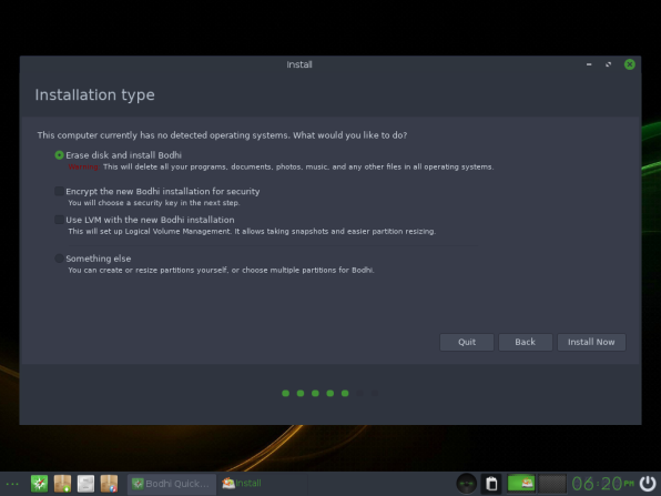 Bodhi Linux 10 Installation Type