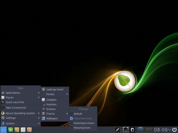 Bodhi Linux 28 Theme selection