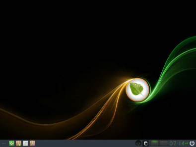 Bodhi Linux 5